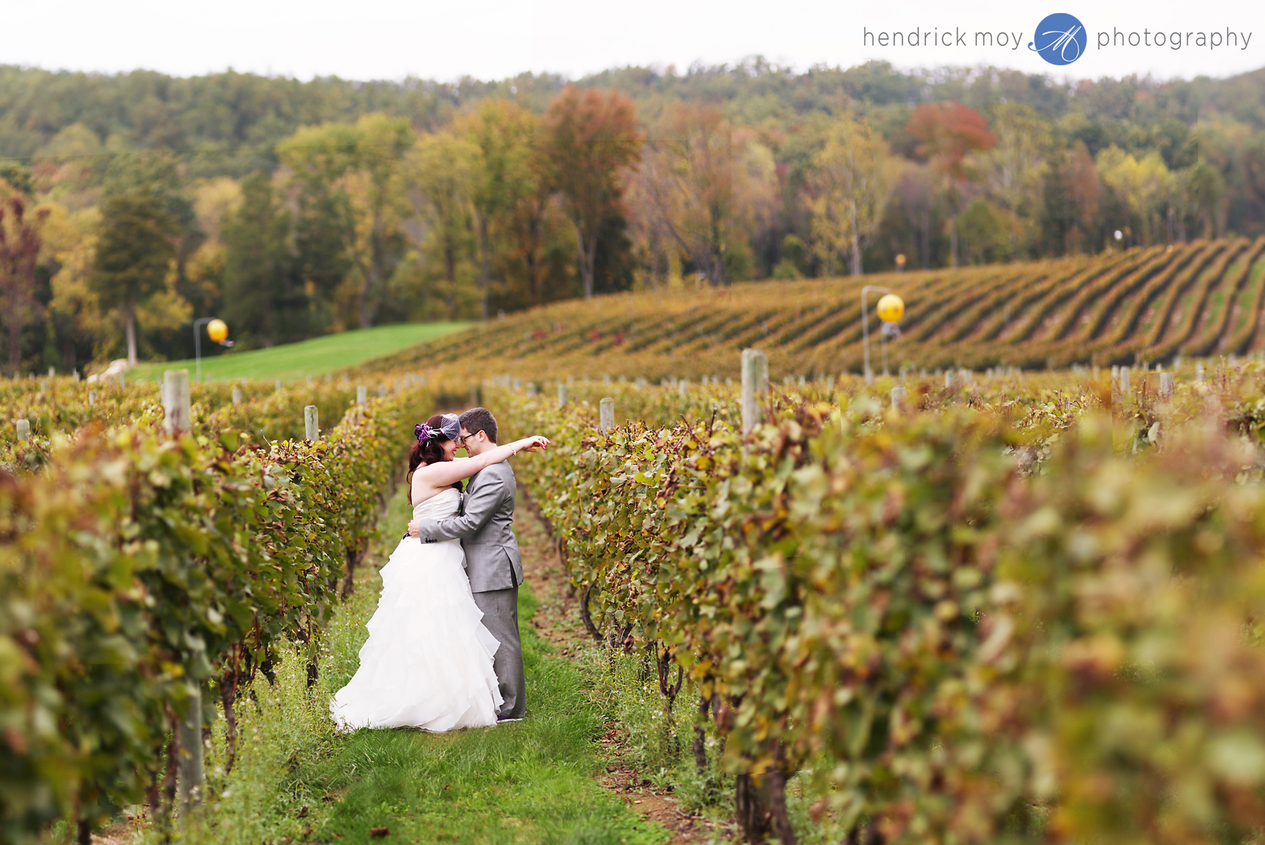 Nicole Amp Andrew S Alba Vineyard Wedding Milford Nj