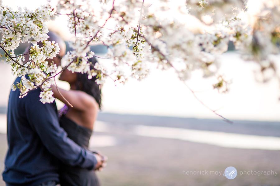 hendrick moy photography cherry blossoms washington dc tidal basin