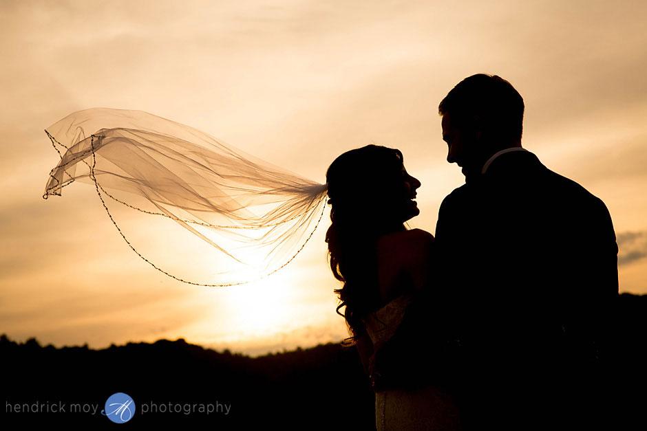 wedding photographer veil shot hendrick moy ny