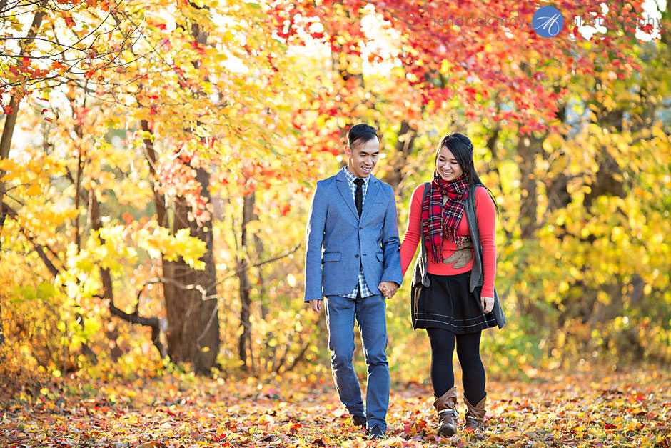 autumn fall engagement pictures hudson valley ny