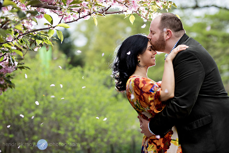 cherry blossoms central park ny engagement photography