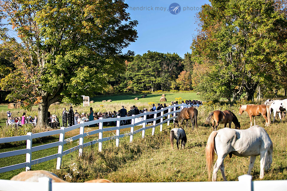 wedding ceremony roxbury ny horses